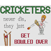 Cricketers Get Bowled Over Cross Stitch Chart